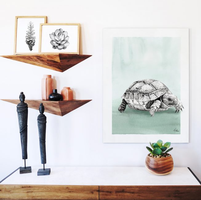 Turtle illustration by Lisa Mona, available on www.art-aid.at